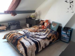 Appartement - Roeulx